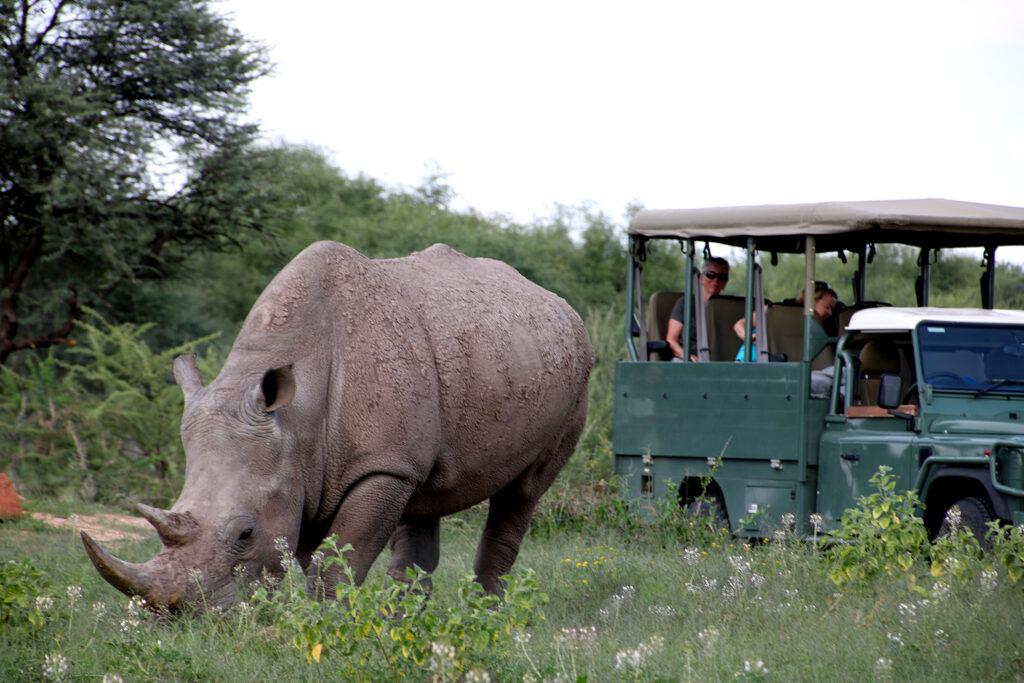 Rhino Drive at Waterberg Wilderness. Photo: Sven-Eric Stender